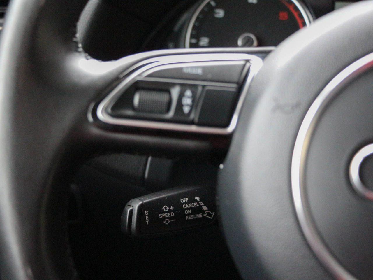Audi (16)