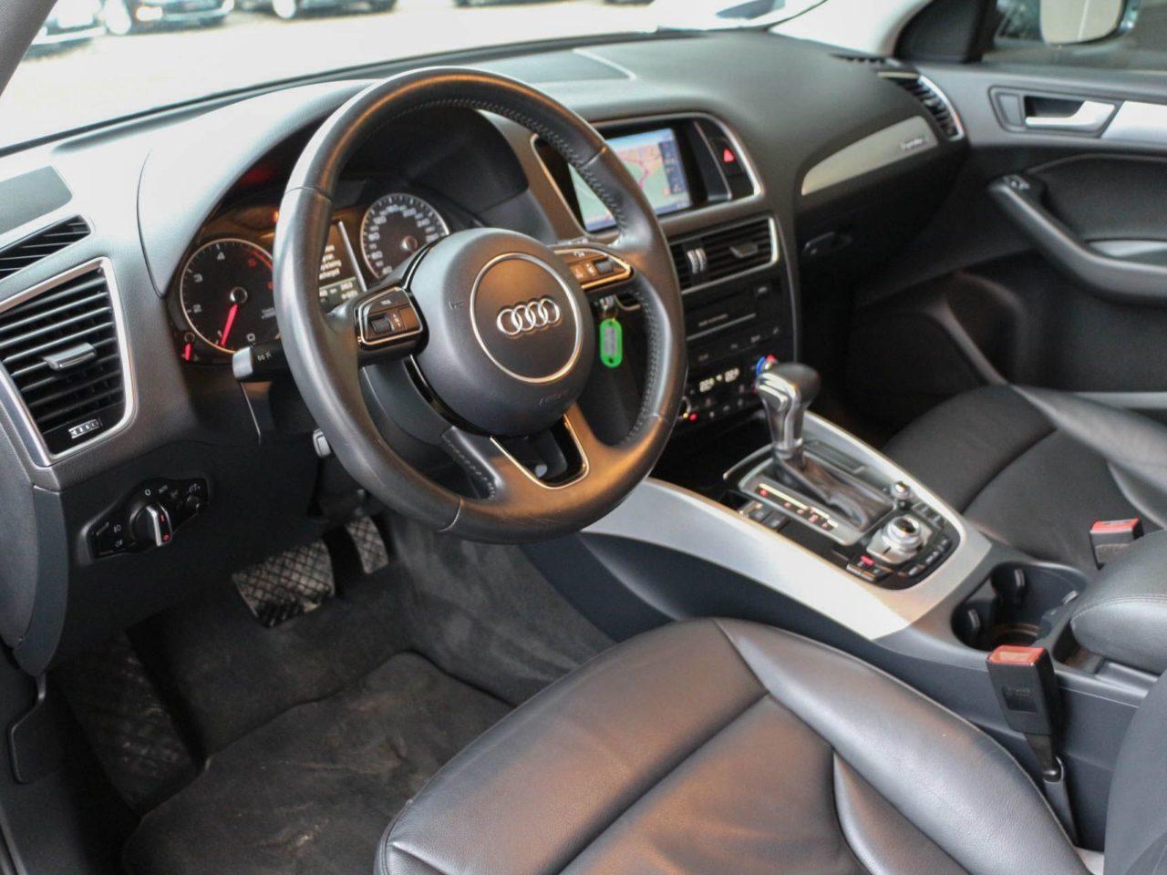 Audi (21)