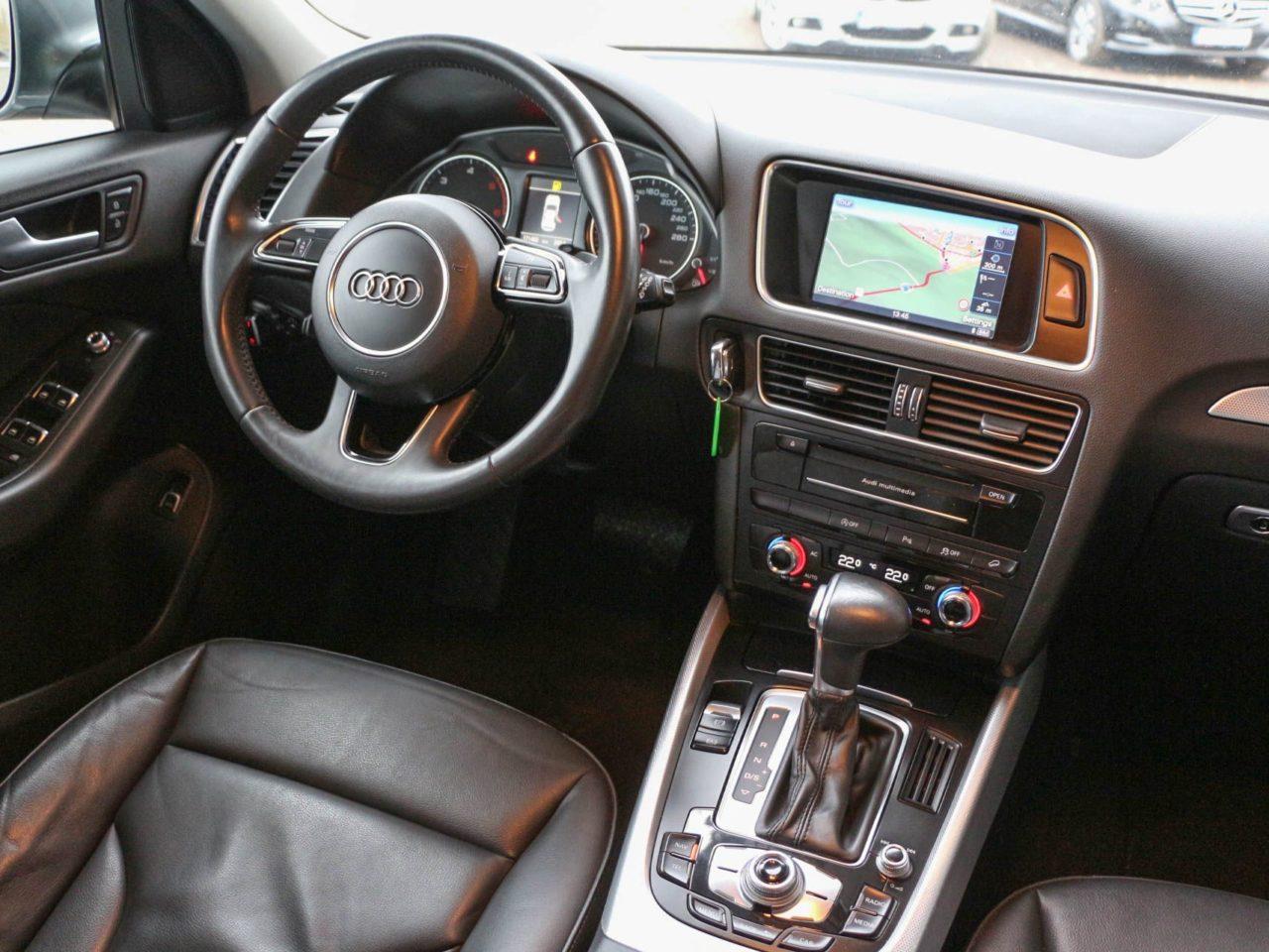 Audi (6)