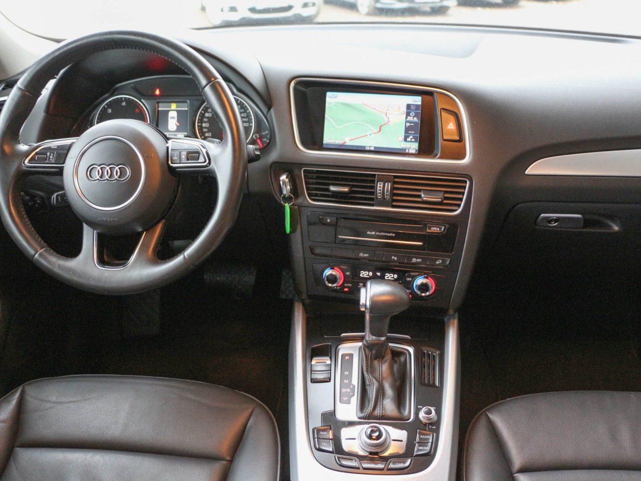 Audi (7)