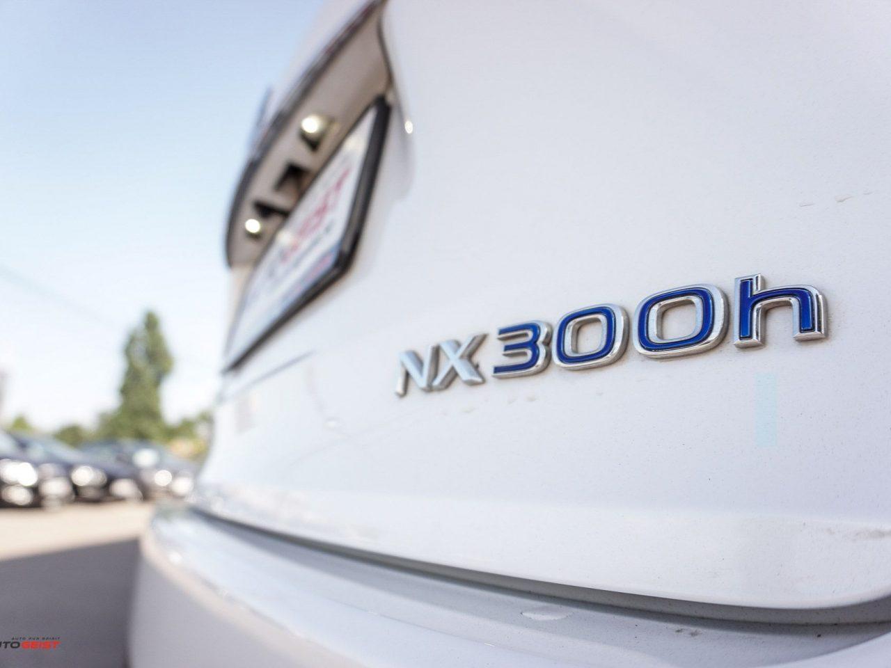 lexus-nx300h-hybrid-1023-02442